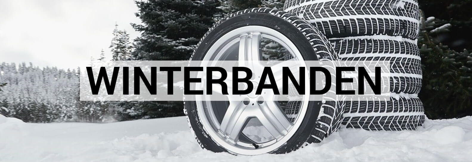 Winterbanden Kia